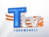 Türkmeneli TV canlı izle